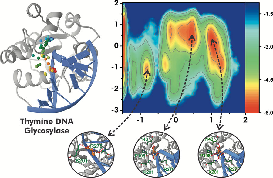 PR20180530_DNA_repair